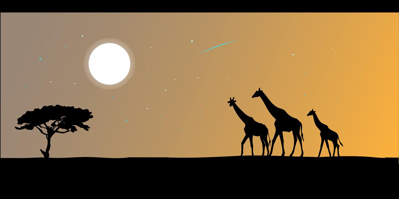 1597393206-giraffe-2257780-1280.png