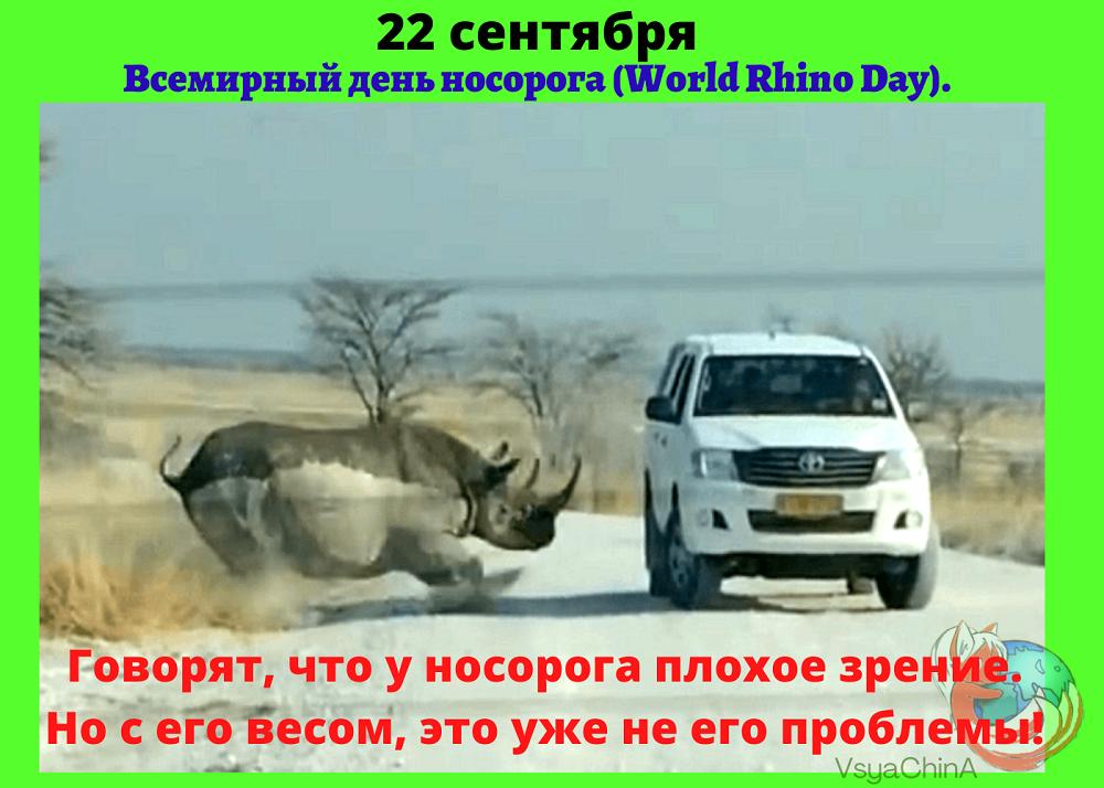 22 сентября_день носорога